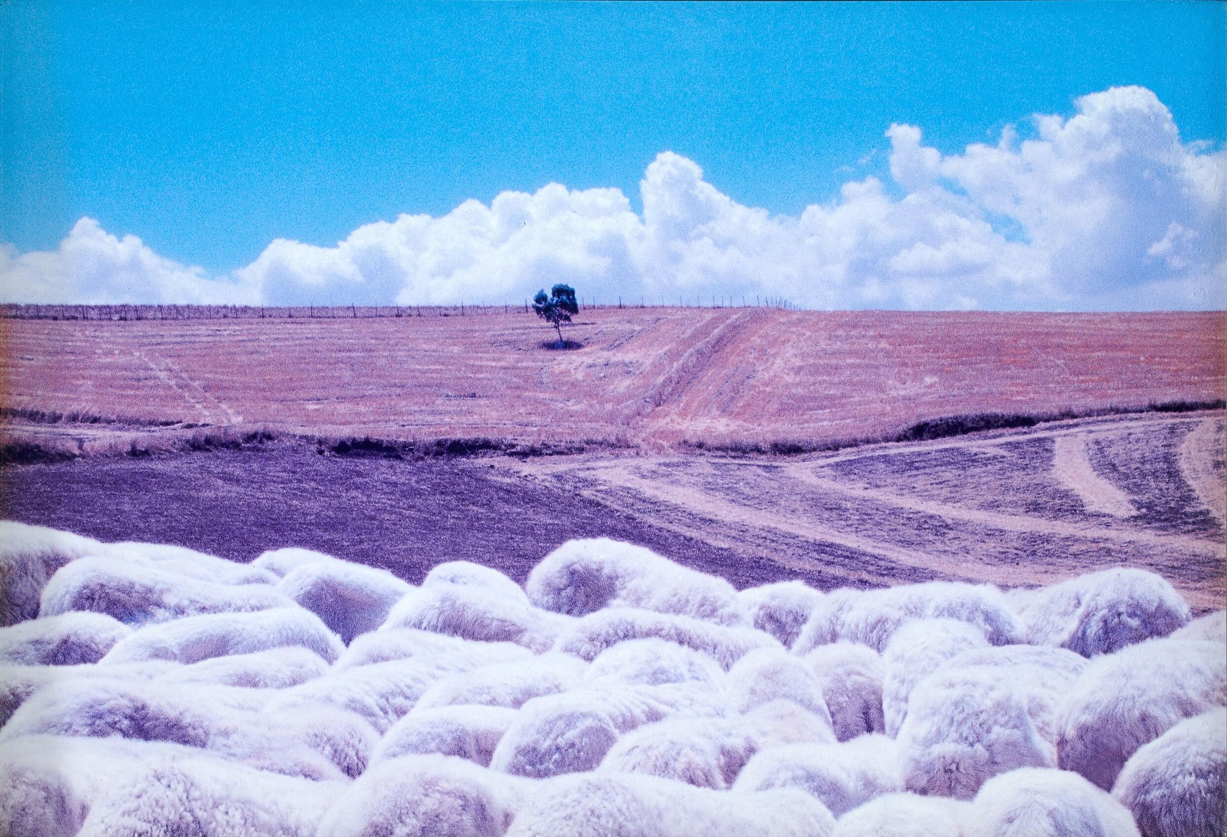 Сицилийский пейзаж, 1992. Фотограф Франко Фонтана