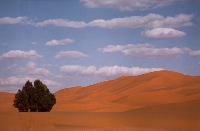 Пейзаж, 1994. Фотограф Франко Фонтана