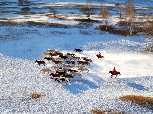 Финалист в категории «Мобильная фотография», 2019. Перегон лошадей. Автор Пэн Юань