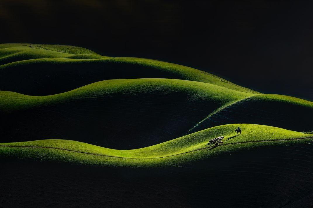 Финалист в категории «Изменённые изображения», 2020. «Пасторальный ритм». Зелёные холмы, Китай. Автор Шэнфу Лу
