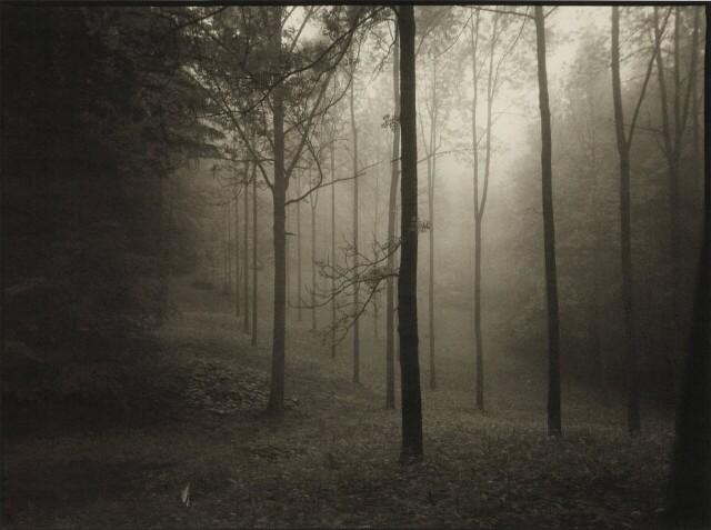 Фотограф Йозеф Судек