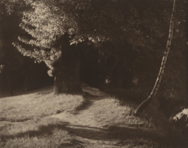 1920 год. Фотограф Йозеф Судек