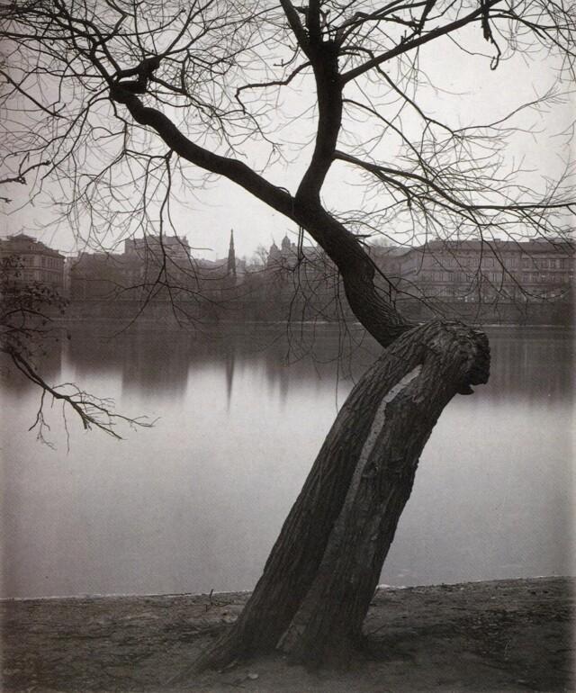 Тишина вещей. Фотограф Йозеф Судек