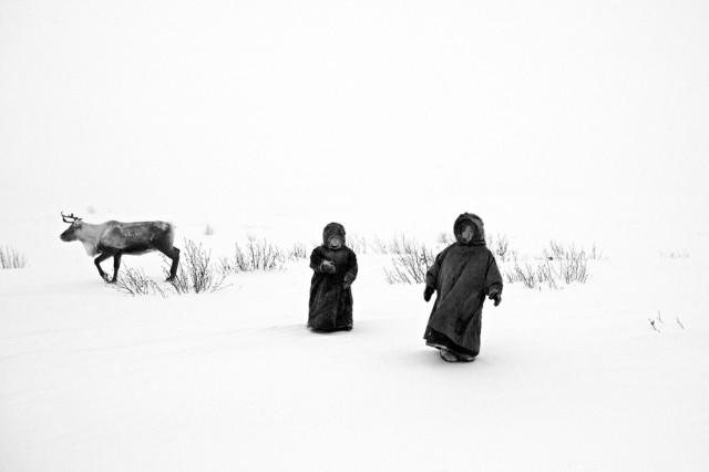 «Средь бела». 3-е место в категории «Люди», серия, 2020. Автор Алессандро Бергамини