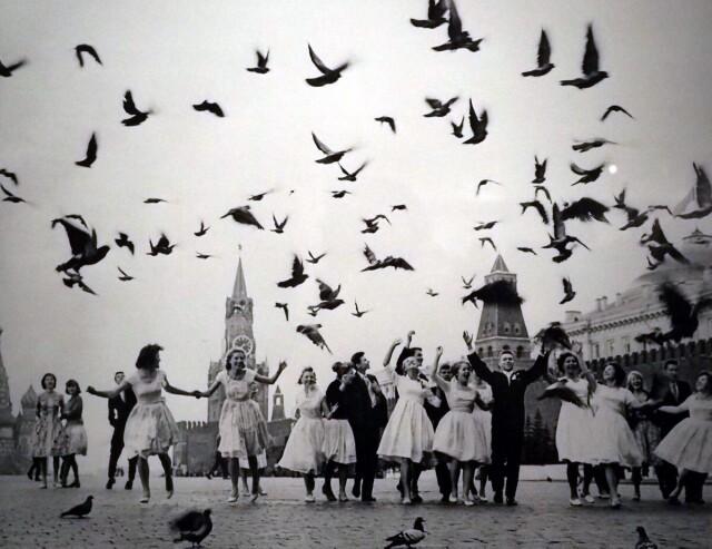 «Голуби мира» 1959. Фотограф Владимир Лагранж