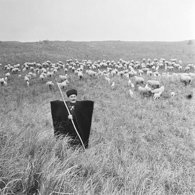 Пастух, 1960-е. Фотограф Юрий Абрамочкин
