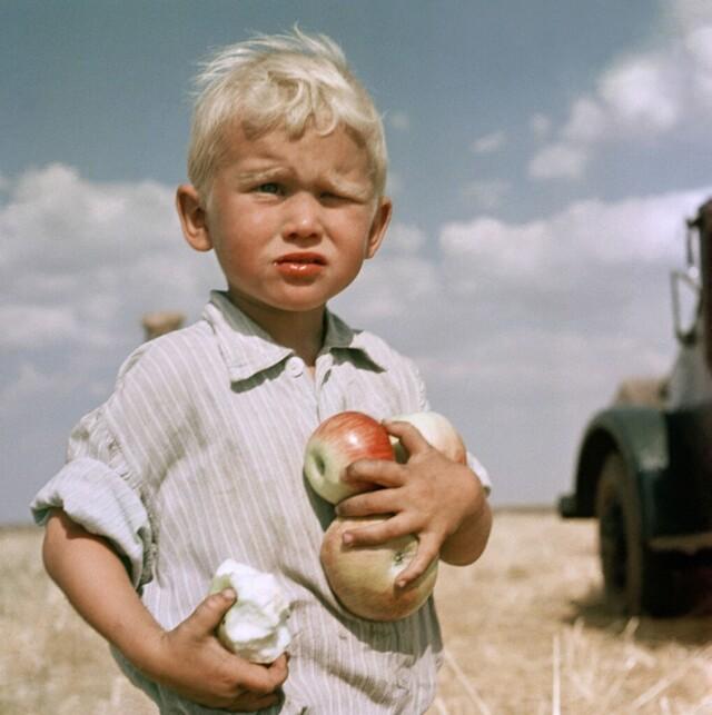 «Целина молодела». Кустанайская область, 1965. Фотограф Юрий Абрамочкин