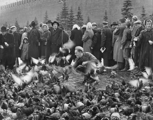 Красная площадь, Москва, 1947. Фотограф Дмитрий Бальтерманц