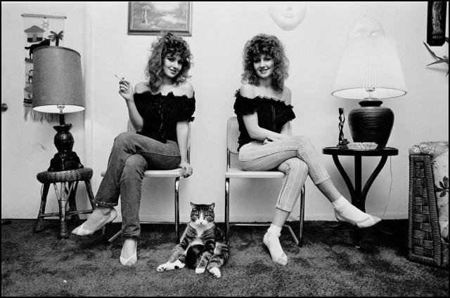 Крутой кот, Майами, Флорида, США, 1985. Джефф Уайденер