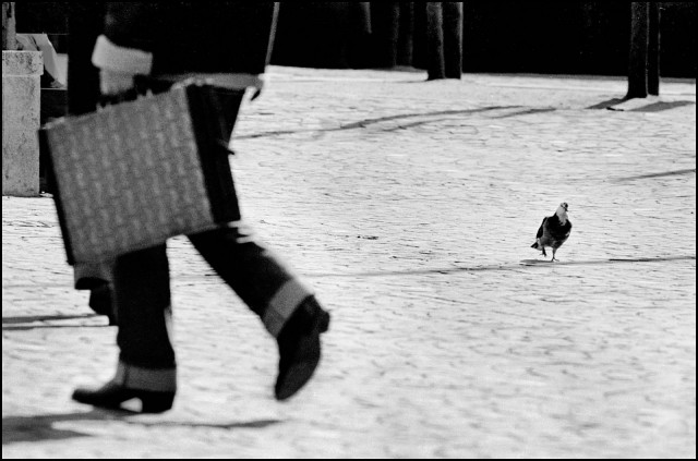 Шагаем в ногу, Брюссель, Бельгия, 1982. Джефф Уайденер