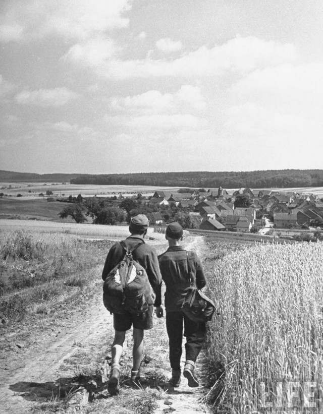 Два бывших солдата вермахта в поисках работы на полях в немецкой провинции, 1946. Уолтер Сандерс