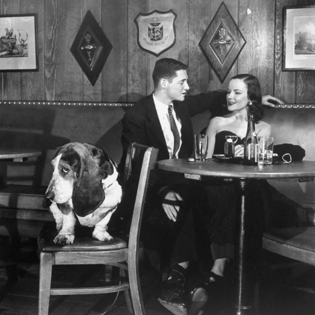 Пёс Морган, 1950. Уолтер Сандерс