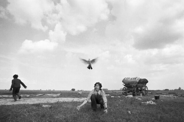Мальчик с голубем, Уральск, 1979 год. Фотограф Ляля Кузнецова