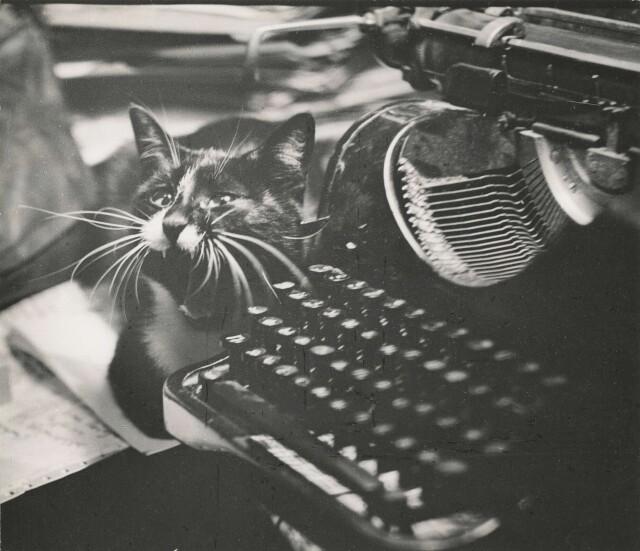 «Секретарь-машинистка», 1976. Фотограф Борис Михалевкин