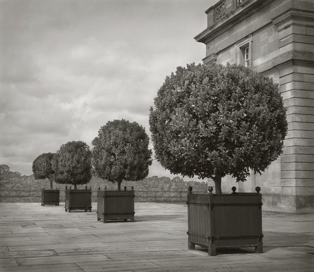Бленхеймский дворец, один из крупнейших дворцово-парковых ансамблей Англии. Бет Доу