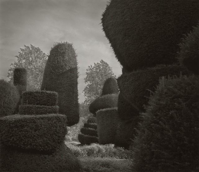 Топиарный сад, Левенс-Холл. Бет Доу