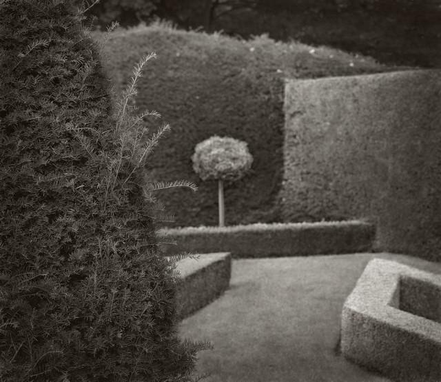 Усадьба Литл Моретон Холл, Чешир, Англия. Бет Доу