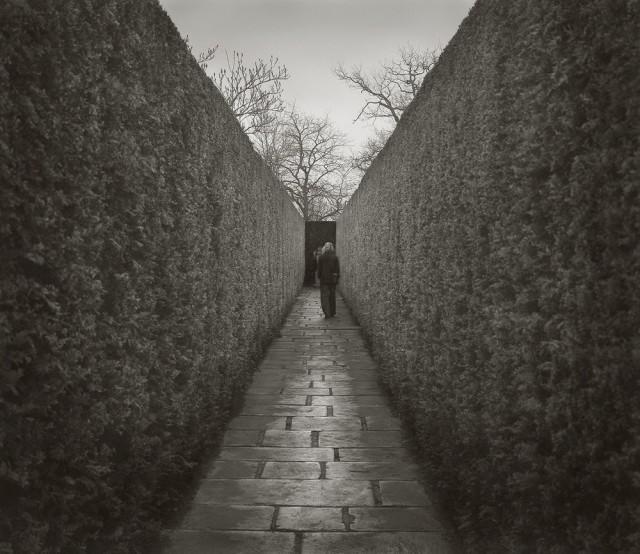 Тисовая прогулка, замок Сиссингхёрст. Бет Доу