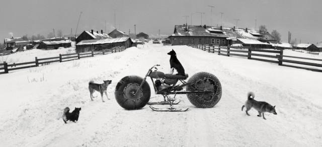 Собаки и снегоход. Соловки, Белое море, Россия, 1992. Фотограф Пентти Саммаллахти