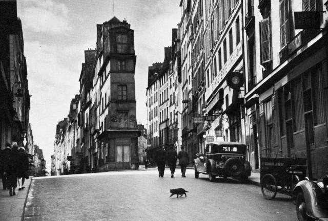 Уличный кот, 1927 год. Фотограф Андре Кертеc