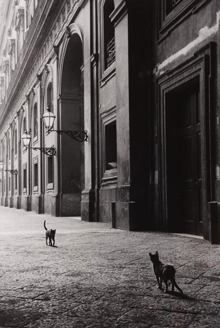 «Встреча на улице». Неаполь, 1958. Фотограф Леонард Фрид