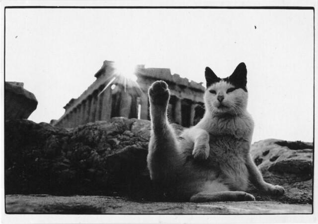 Парфенон, Афины, 1986. Фотограф Эдгар Олстинс
