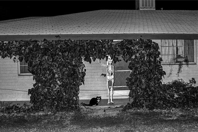 День мёртвых, Аризона, 1979. Фотограф Дэвид Хёрн