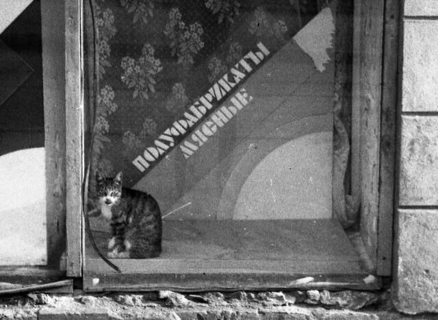 «Полуфабрикаты мясные». Ленинград. Фотограф Сергей Подгорков