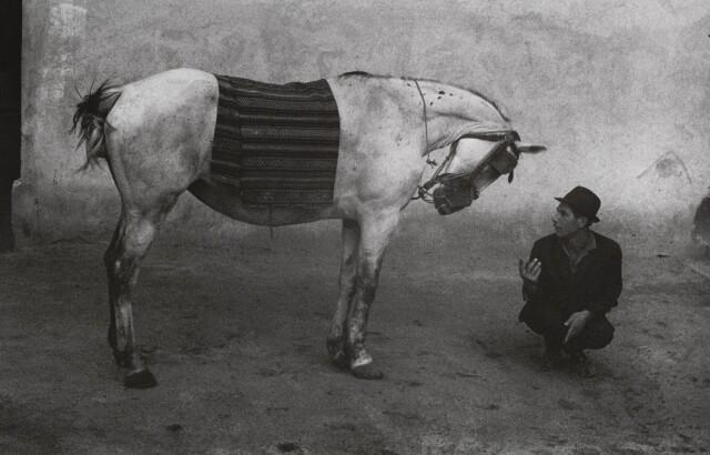 Цыган с лошадью, 1968. Фотограф Йозеф Куделка