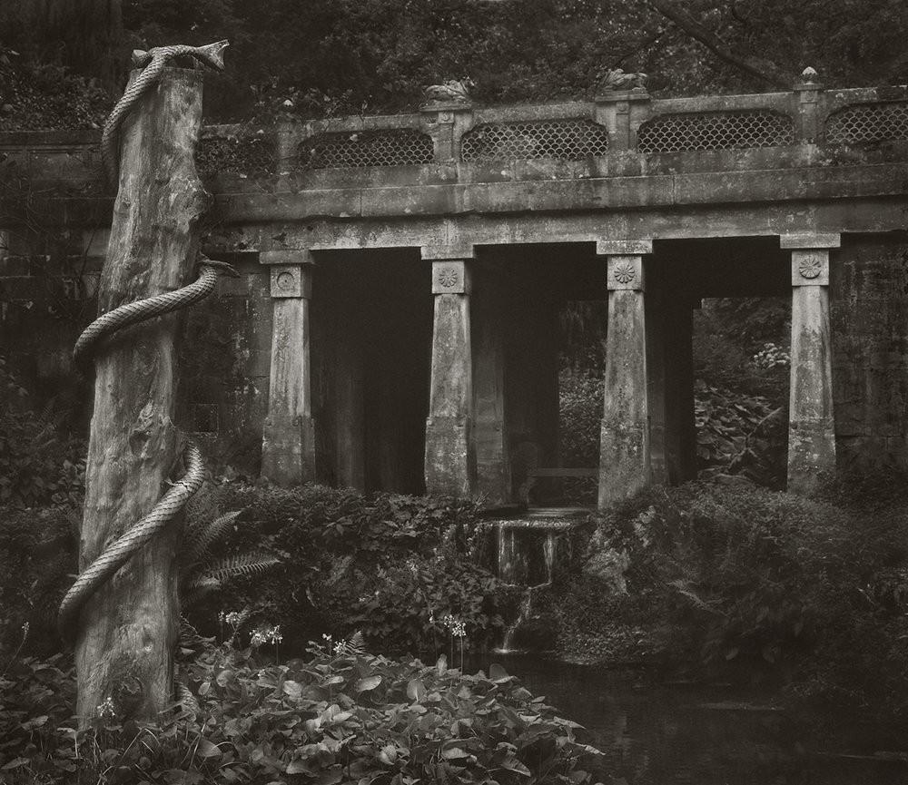 Бет Доу: медитативный фотопроект «В саду»