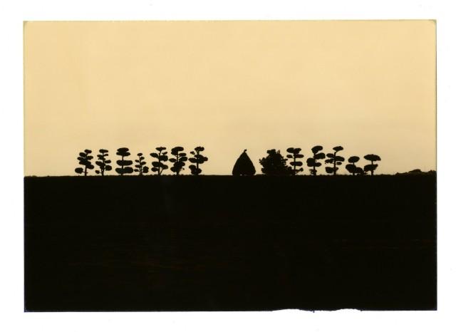 Из проекта «Коробка Ку». Масао Ямамото (8)