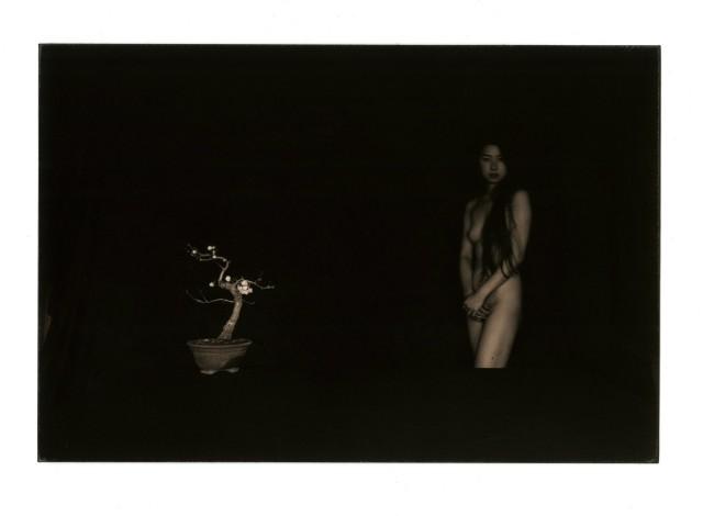 Из проекта «Коробка Ку». Масао Ямамото (29)