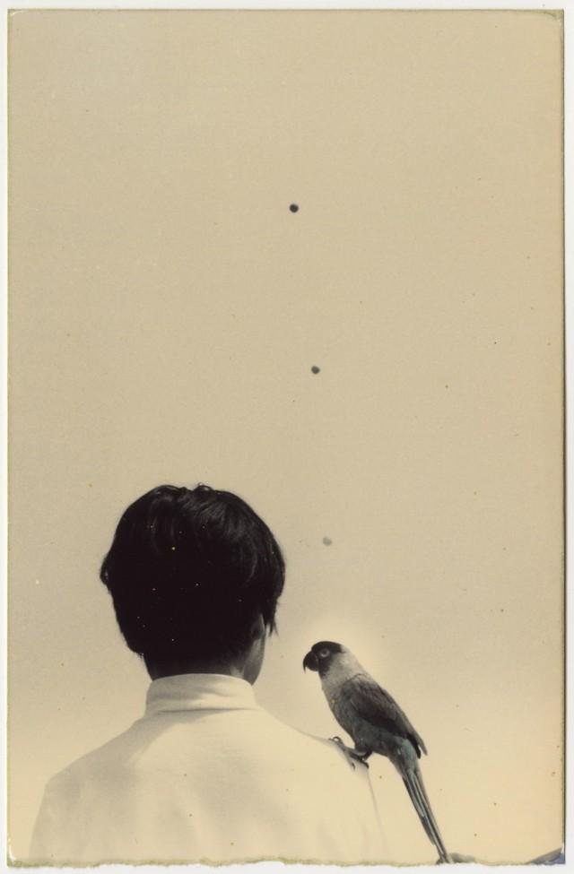 Из проекта «Коробка Ку». Масао Ямамото (31)