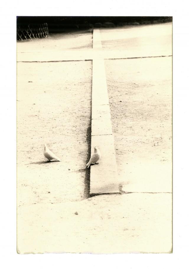 Из проекта «Коробка Ку». Масао Ямамото (36)