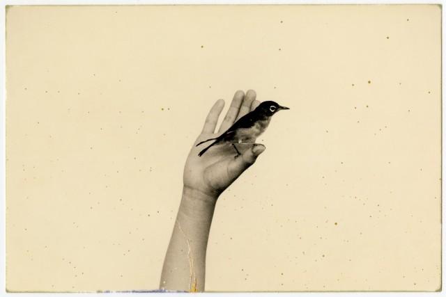 Из проекта «Наказора». Масао Ямамото (5)