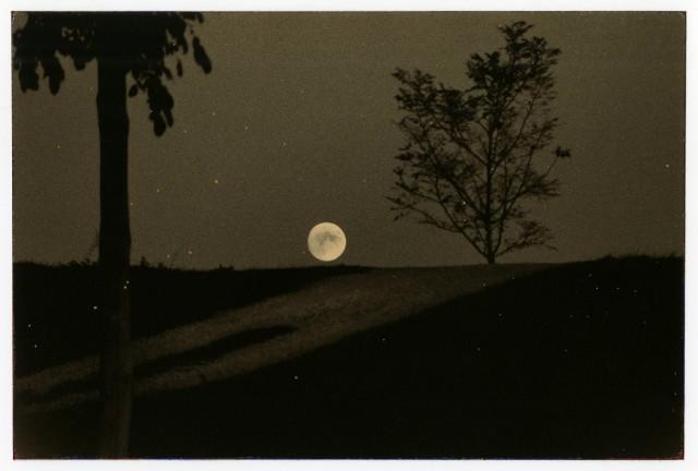Из проекта «Наказора». Масао Ямамото (11)