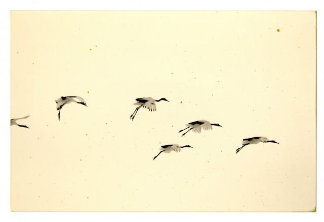 Из проекта «Наказора». Масао Ямамото (17)
