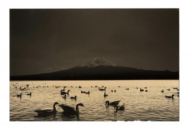 Из проекта «Наказора». Масао Ямамото (22)