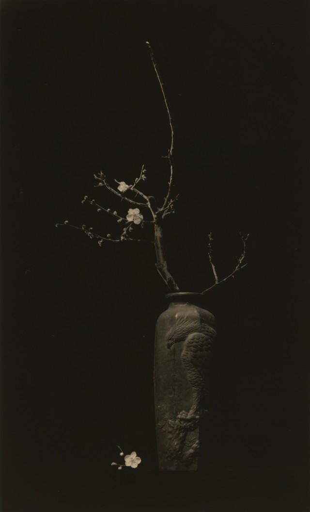 Из проекта «Кава=Поток». Масао Ямамото (35)