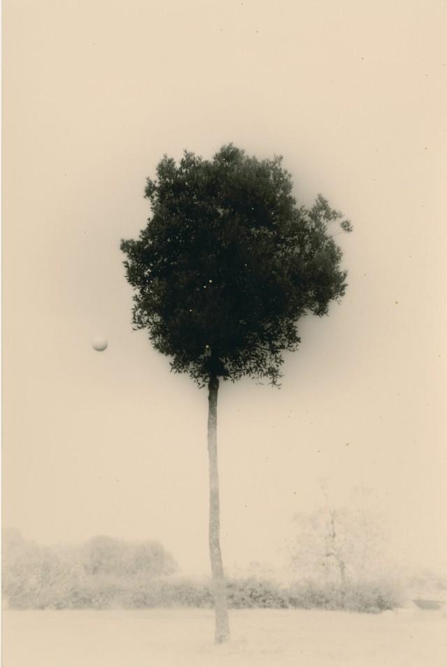 Из проекта «Кава=Поток». Масао Ямамото (16)
