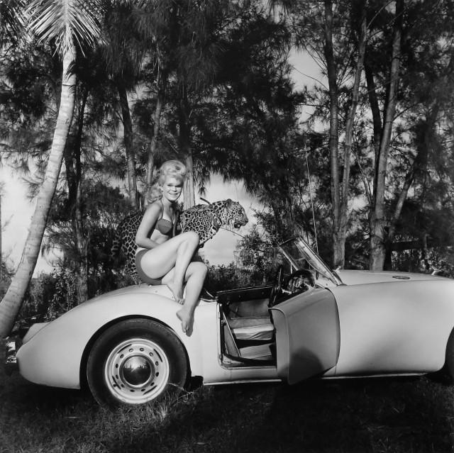 Элайна Лекас со своим питомцем леопардом Неро, 1965. Банни Йеджер