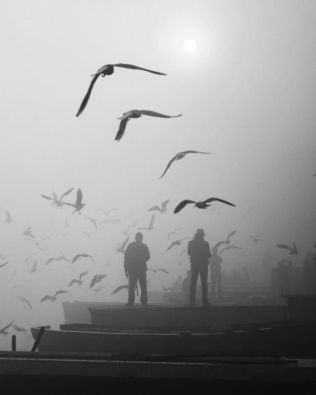 Дели, Индия, 2020. Автор Пуджа Бишт