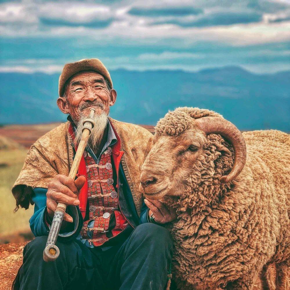 Поощрительная премия в категории «Портрет», 2020. Пастух. Автор ДжинСон Ху