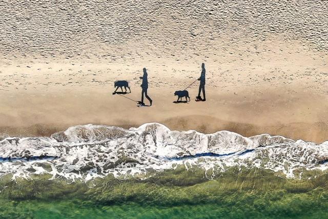 3-е место, 2018. «2 человека, 2 собаки и 4 тени». Автор Евгений Самученко