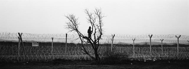 3 место в категории «Долгосрочный проект», 2021. Беженец смотрит через пограничный забор, отделяющий Грецию от Македонии, 2 марта, 2016. Автор Ангелос Торцинис