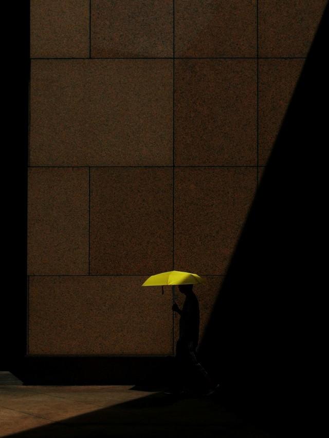 Поощрительная премия в категории «Уличная фотография», 2019. Жёлтый. Автор Вай Йинг Квок