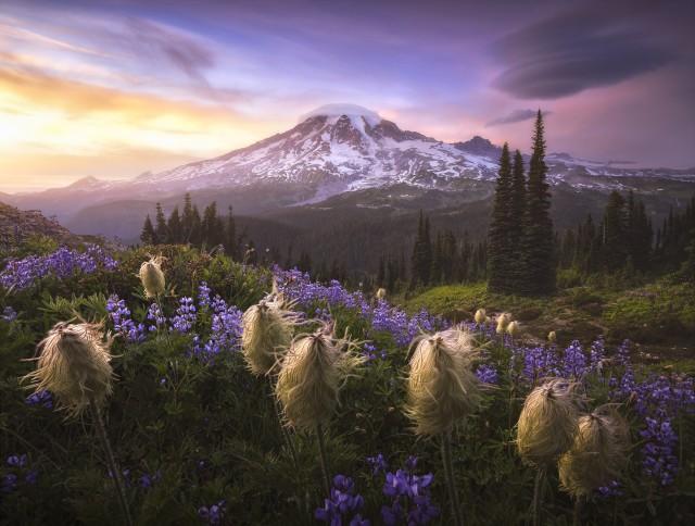 2 место в номинации «Пейзажный фотограф года» 2020. Национальный парк Маунт-Рейни, штат Вашингтон. Автор Джошуа Сноу