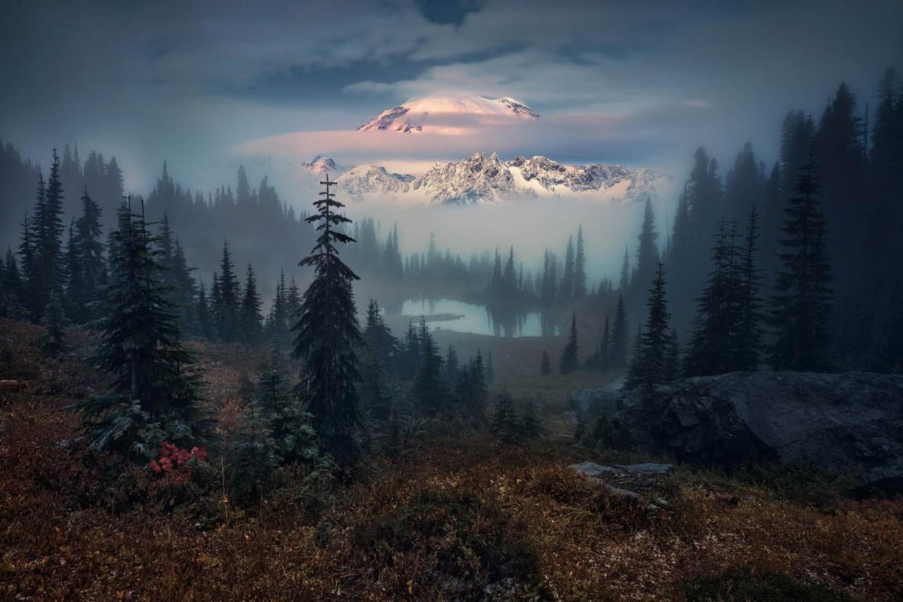 Финалист, 2020. Рейнир, лес и озеро. Автор Феликс Рёзер