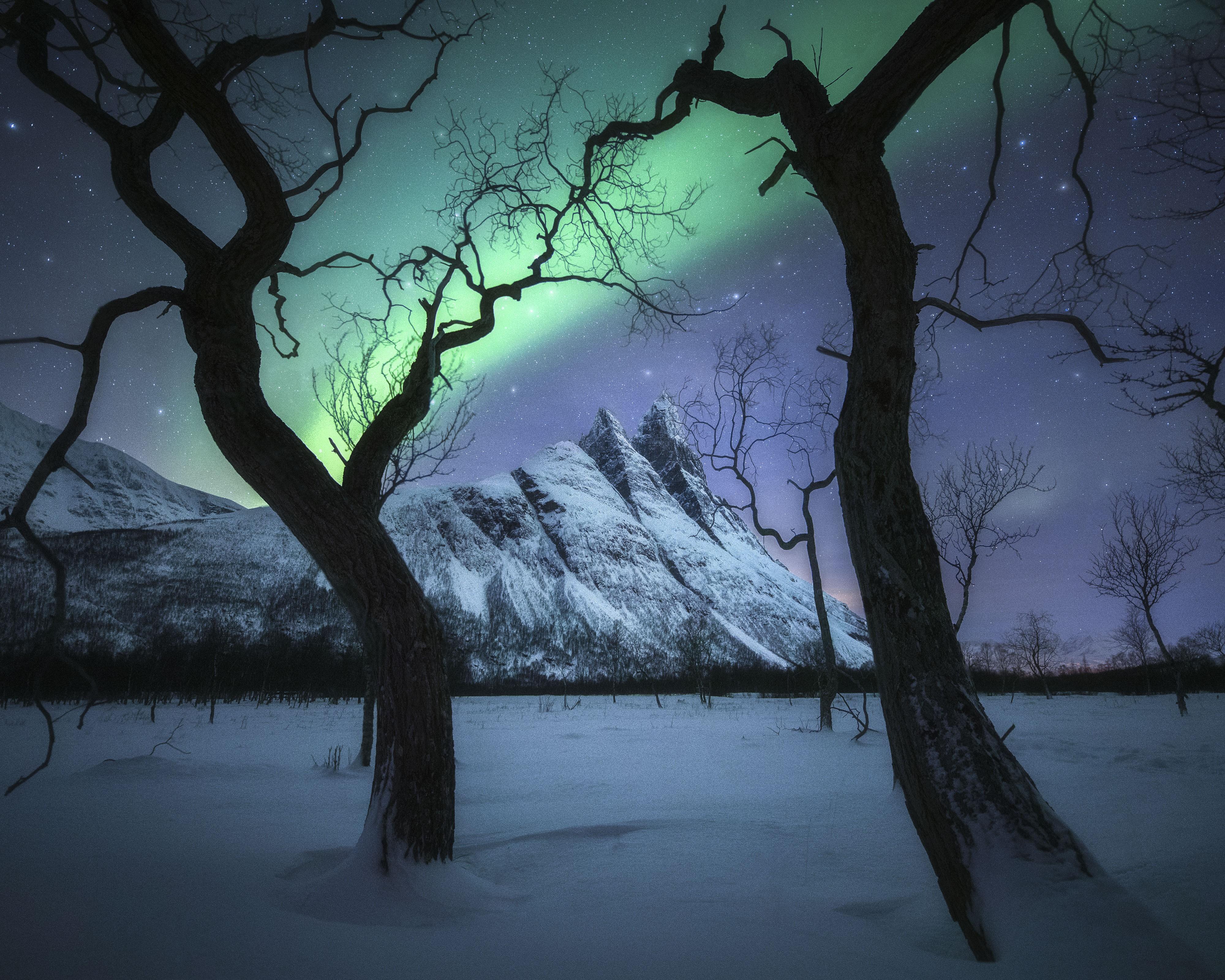 1 место в номинации «Пейзажный фотограф года» 2020. Волшебная ночь, Тромсё, Норвегия. Автор Кельвин Юэнь
