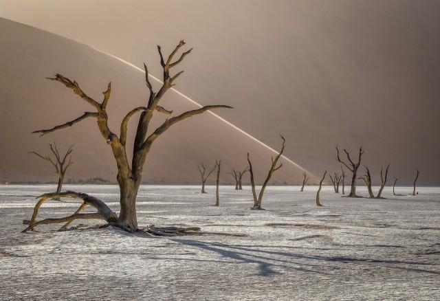 Национальный парк Намиб-Науклуфт в Намибии. Финалист, 2019. Автор Томаш Шпила